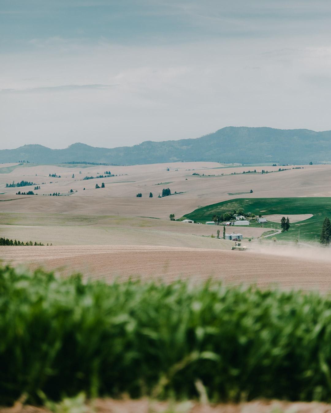 FarmFInal3333 (1 of 1).jpg