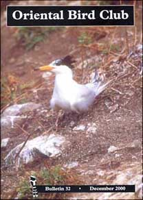 Chinese Crested Tern,  Bulletin 32  cover (Chang Shou-hua)