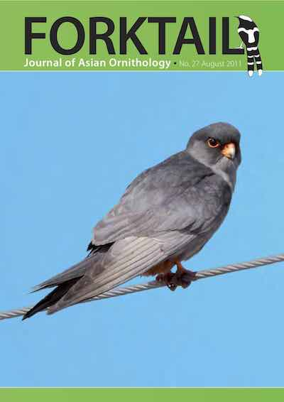 SUBSCRIBE! - Join OBC to receive Forktail is the Journal of Asian Ornithology published by Oriental Bird Club once a year together with two issues of BirdingASIA. In line with OBC Policy, Forktail papers are made freely available on the website three years after publication. Prior to this, these issues can be purchased as electronic downloads, or hard copies of most issues can be ordered from our online store.