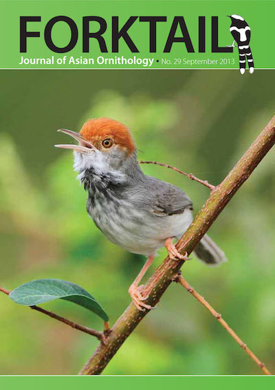 Forktail 29 - Forktailis the Journal of Asian Ornithology published by  Oriental Bird Club once a year and distributed to OBC members. In line  with OBC Policy, papers are made freely available on the website three  years after publication. Prior to this, these issues can be purchased as electronic downloads, or hard copies of most issues can be ordered from our online store.