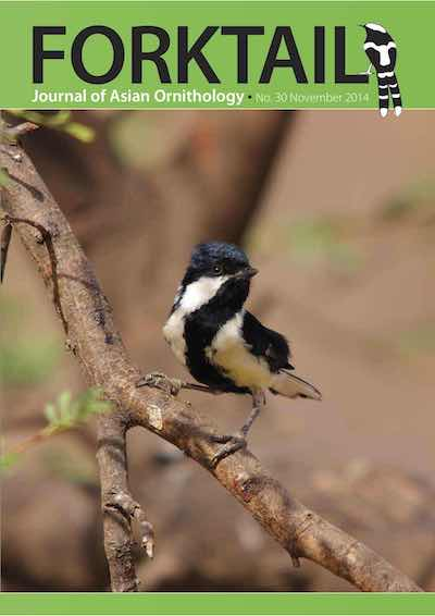 Forktail 30 - Forktail is the Journal of Asian Ornithology published by Oriental Bird Club once a year and distributed to OBC members. In line with OBC Policy, papers are made freely available on the website three years after publication. Prior to this, these issues can be purchased as electronic downloads, or hard copies of most issues can be ordered from our online store.