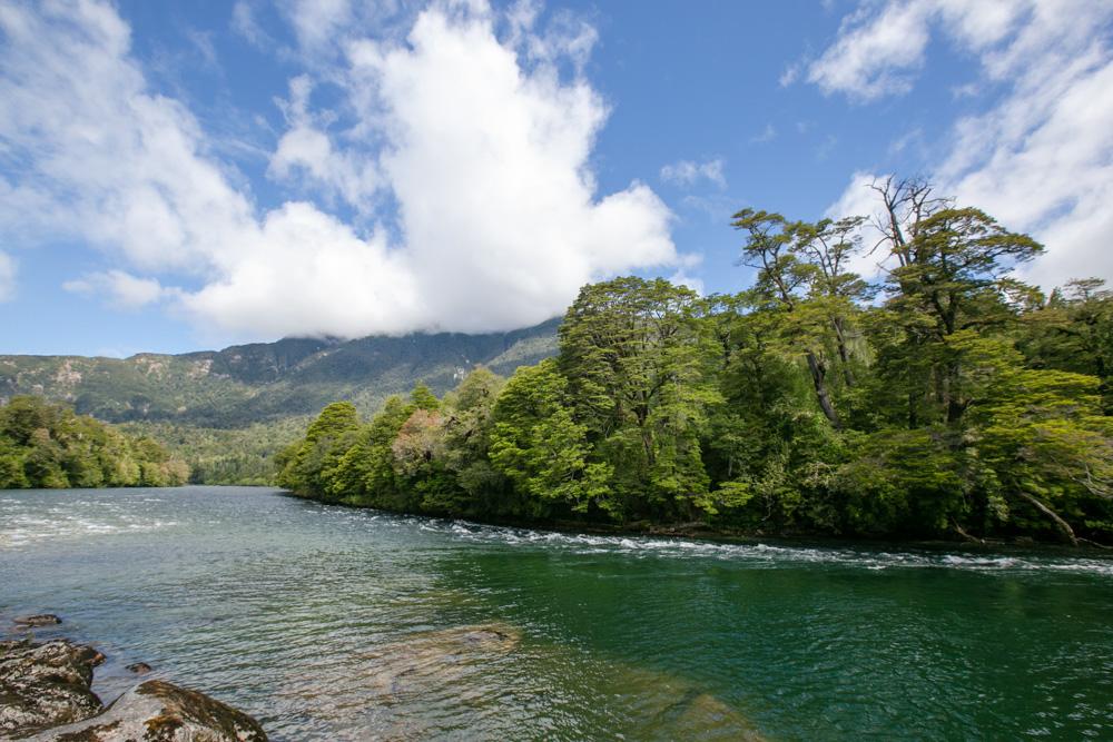 Reserva Río Cisnes-9.jpg