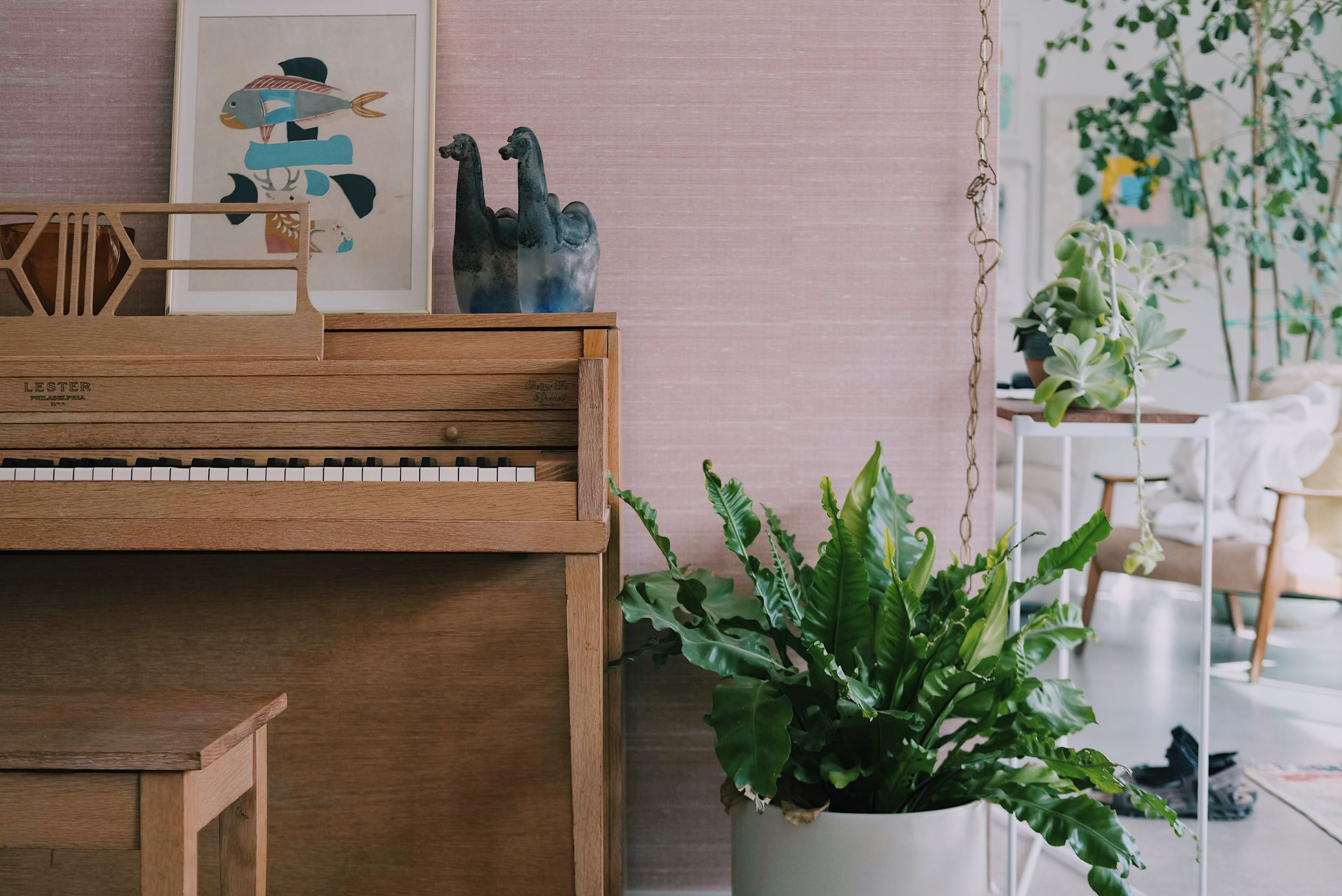 piano-lessons-by-ear-sonoma-bay-area