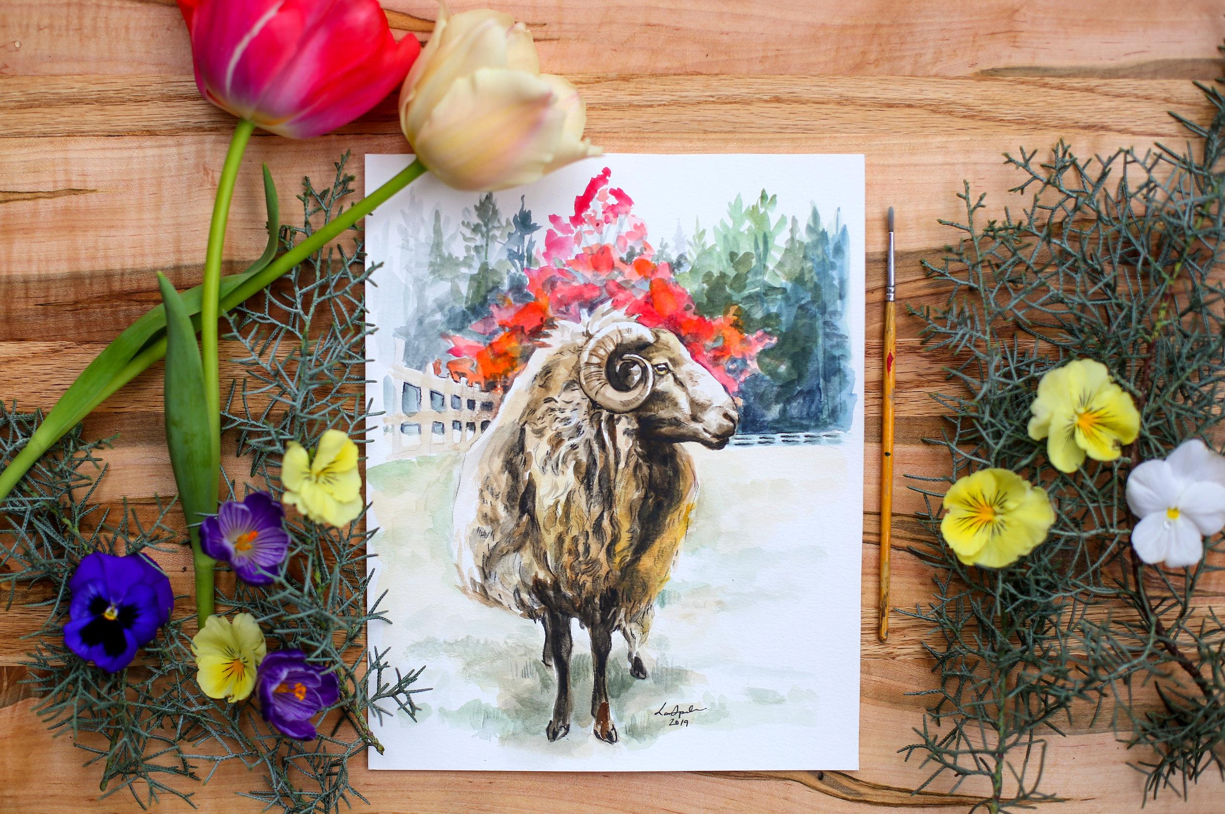 Icelandic Sheep Painting