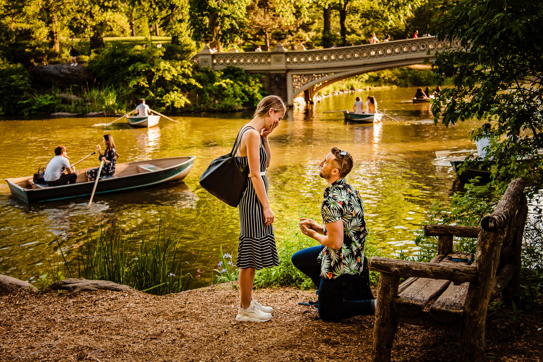 Central Park NYC Proposal guys get on knee