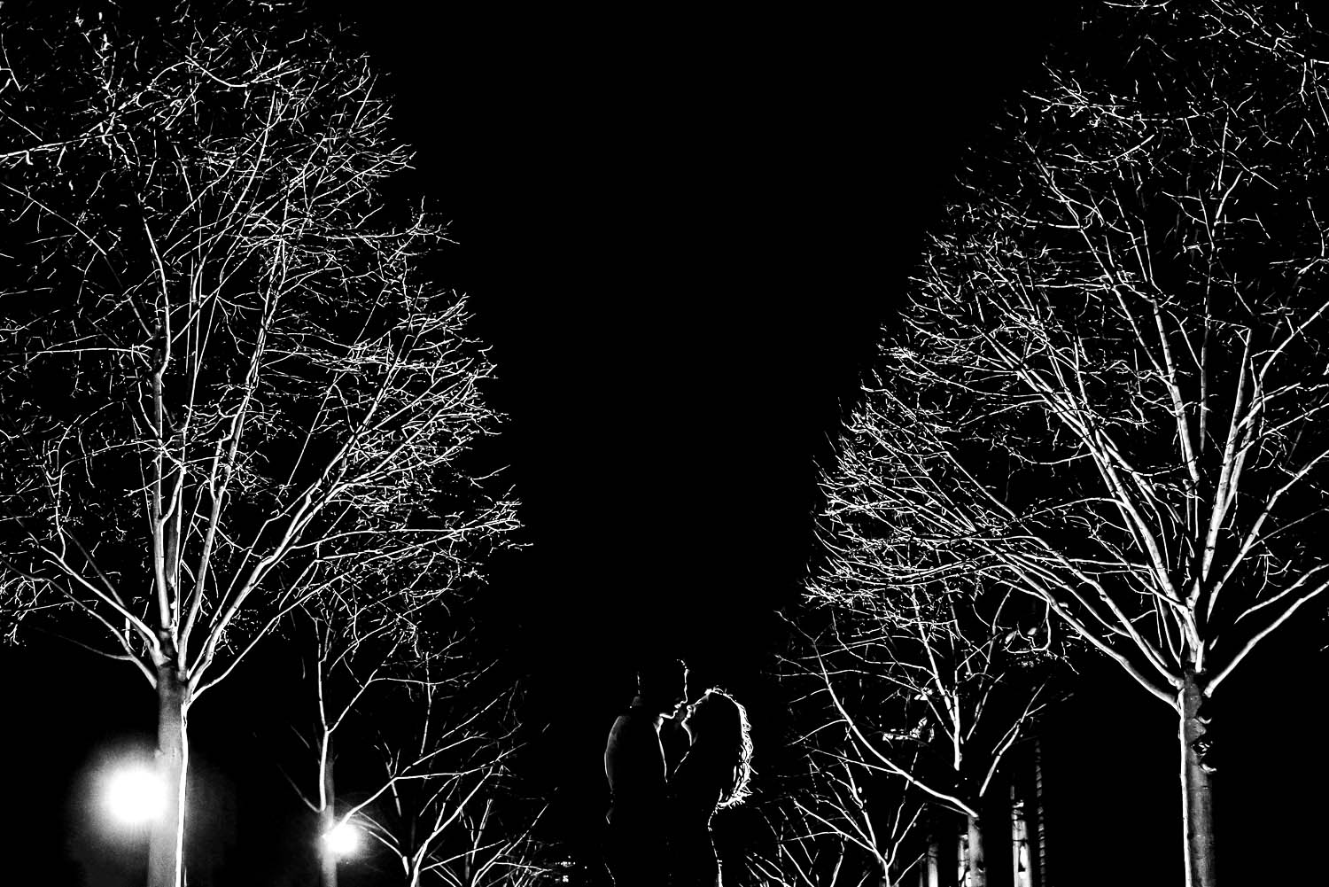 Bride and groom night black and white portrait with trees