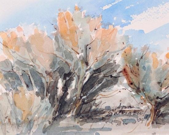 Sagebrush, Evening