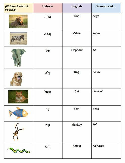unit-three-animal-vocab-list.jpg