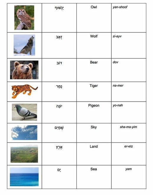 unit-three-animal-vocab-list-2.jpg