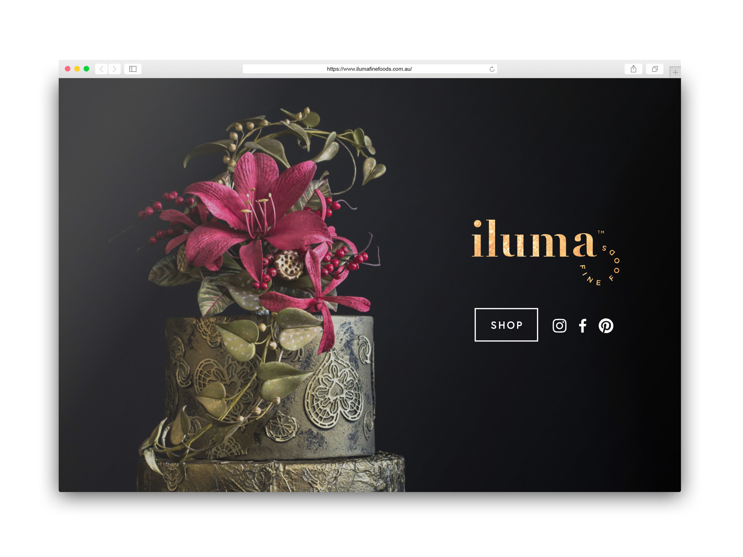 Iluma website.jpg