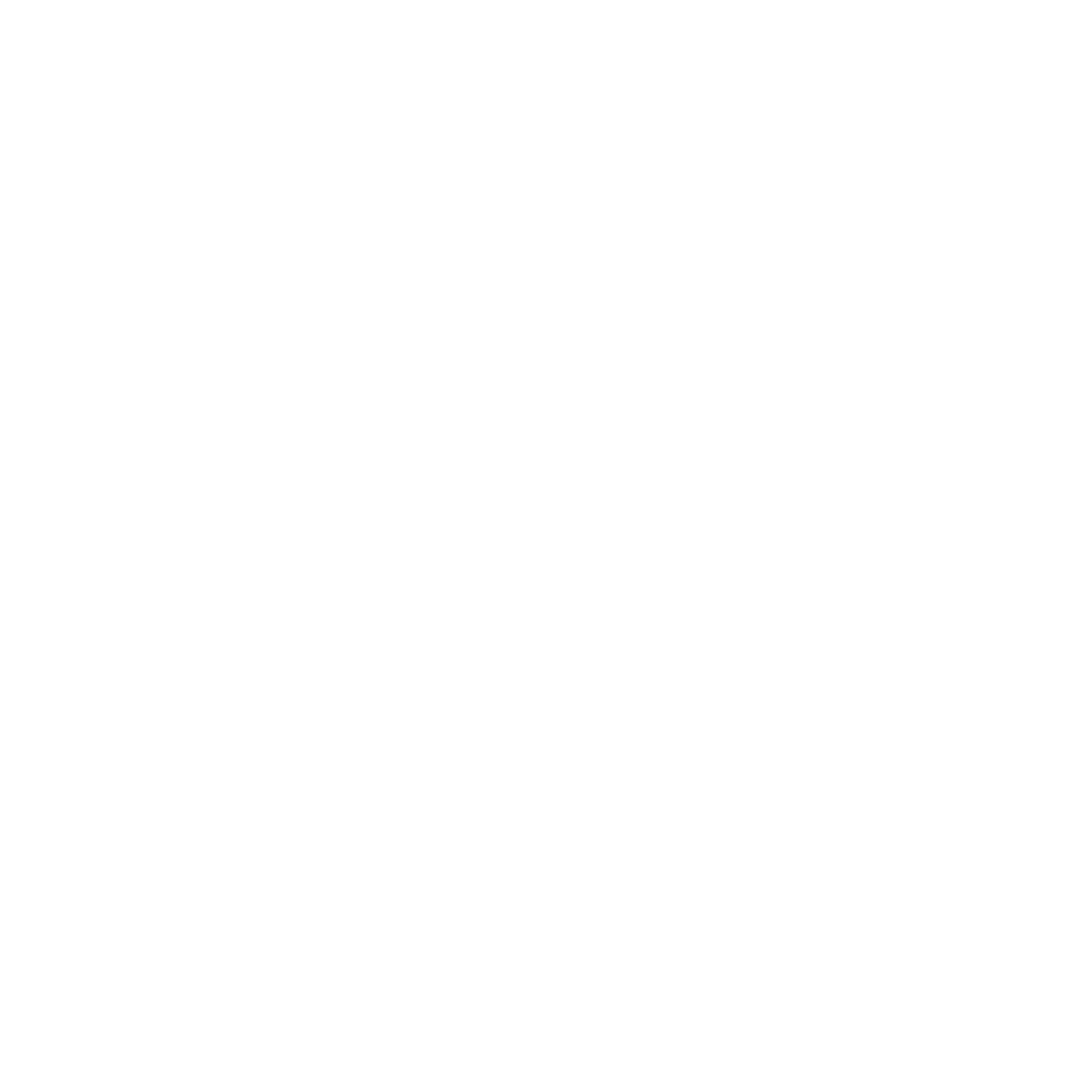 S2G_Logo-White_Web-Translucent-2.png