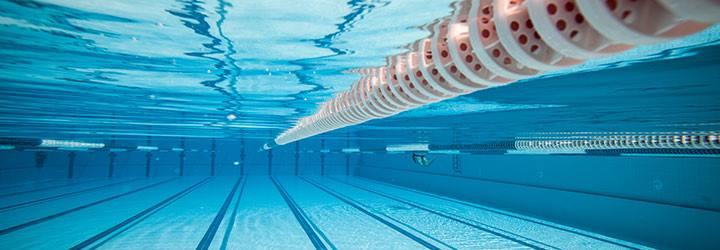 Adelaide Sessions - Tuesday AM - Swim Squad - Glen OsmondThursday AM - Run Squad - Uni Loop