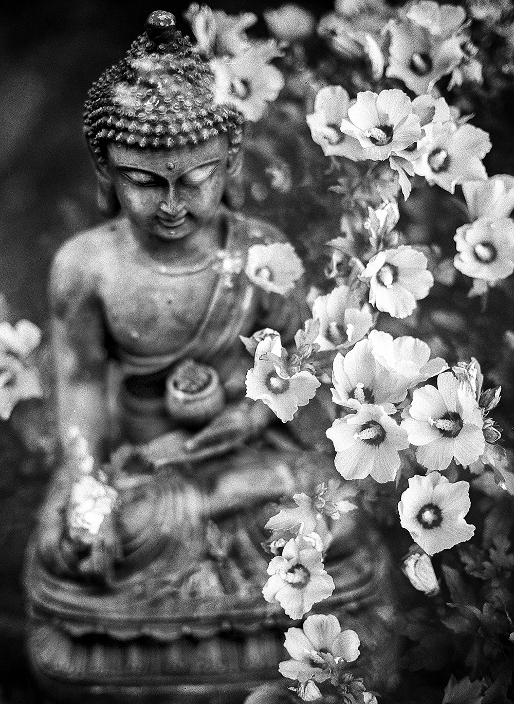 Smaller Buddha.jpg