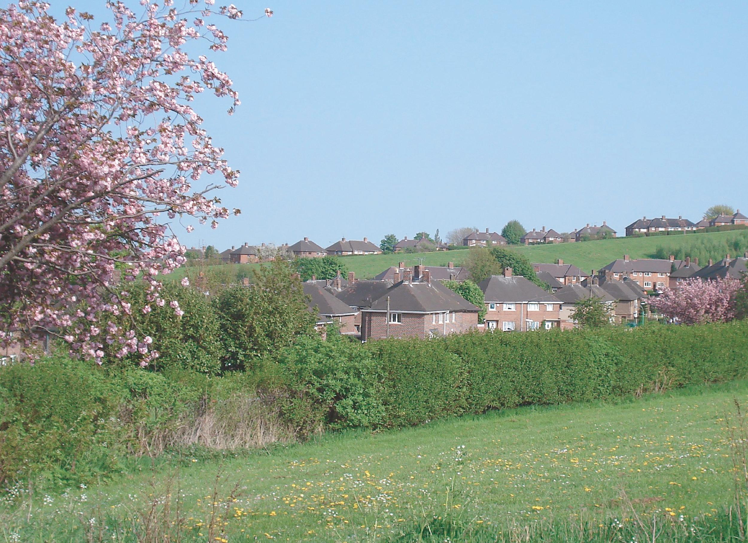 LandscapePart2CoverPhoto.jpg