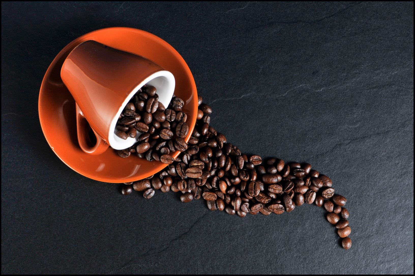 Recorrido del cafÉ - 8. Recorre haciendas cafetaleras y cafés locales. El café puertorriqueño es uno de calidad. Probablemente entre los mejores del Mundo. Cada municipio cuenta con cafés y cafetines que ofrecen una experiencia única y muchos de ellos a excelentes precios. En los pueblos de la montaña puedes combinar esta experiencia visitando las haciendas y fincas cafetaleras que te ofrecerán un recorrido por el proceso de producción. No solo aprenderás, sino que probarás el mejor café que hayas probado.