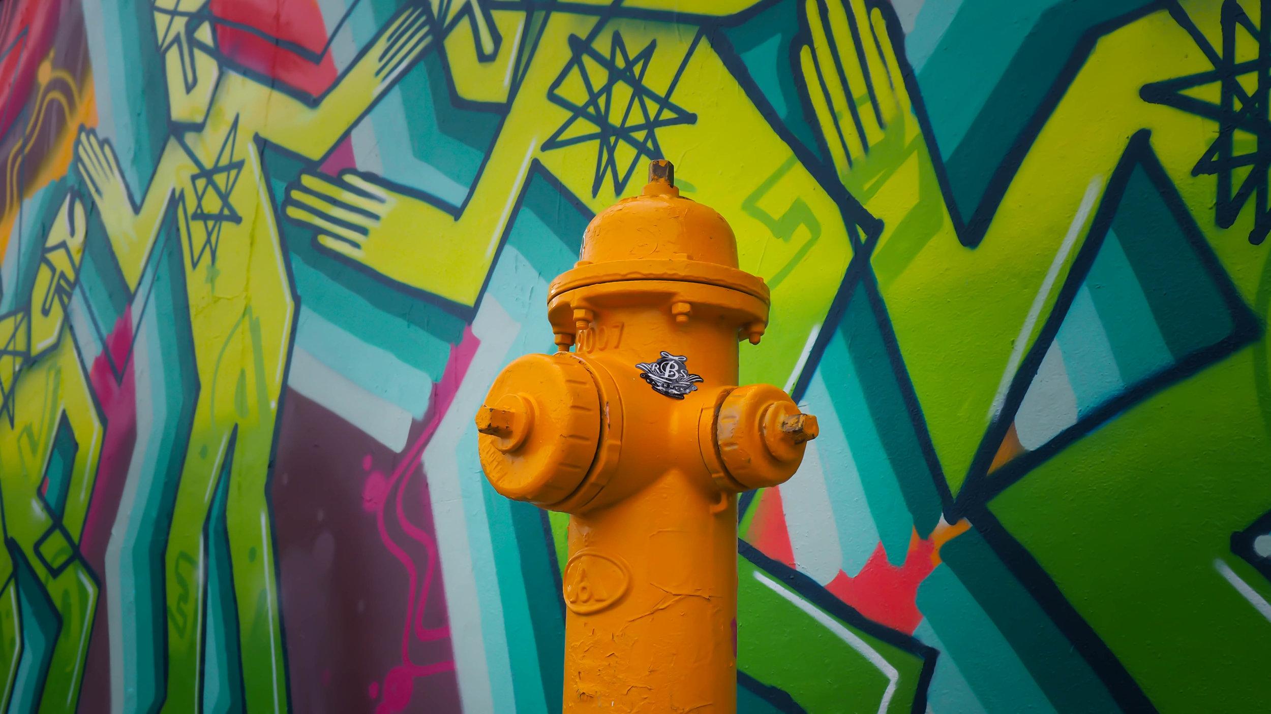 Captura el hermoso arte urbano de Wynwood - a. Wynwood es uno de los distritos más reconocidos mundialmente por su impresionante colección de arte urbano. Sus murales y grafitis te servirán de fondo para que tomes algunas de las fotos más hermosas en tus viajes. Este recorrido lo puedes hacer por tu cuenta sin gastar un solo centavo.