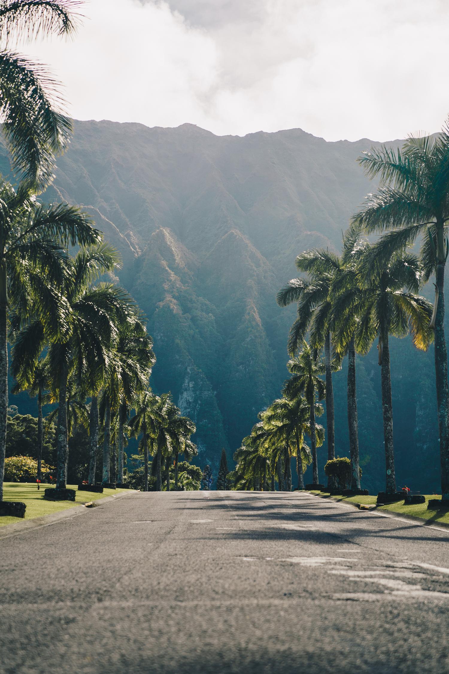 ¿Cuán costoso es? - Hawaii es un estado muy costoso. De acuerdo con la plataforma de alquiler de apartamentos Airbnb, el costo promedio de una propiedad por noche es de $170. El costo promedio por hotel por noche es de $264, según datos de 2017. Aunque existen hostales, los precios promedios de estos pueden ascender entre $39 y $90 por noche.