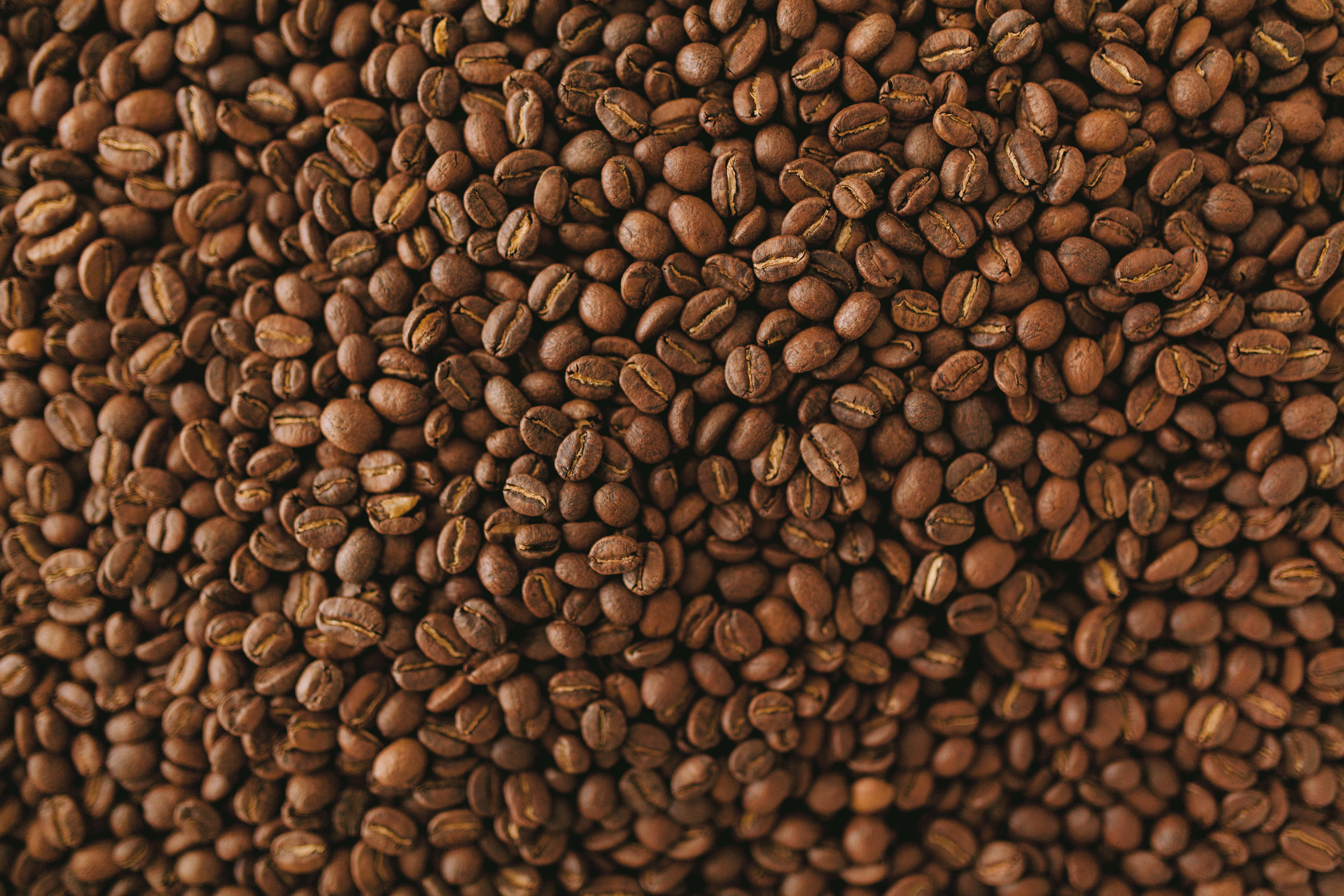 Charlotte Commercial Photographer Creative Manner Hex Coffee-40.jpg