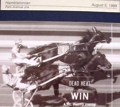1989 dead heat Meadowlands.jpg