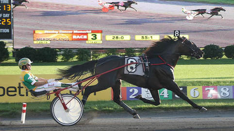 Walner and driver Tim Tetrick report home victorious in the first division Stanley Dancer Memorial at the Meadowlands Saturday night.