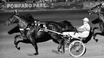 Baltic Speed with stablemates Sandy Bowl & Giorgia D finishing first, second and third in the 1984 Breeders Crown 3-Year-Old Colt Trot at Pompano Park.