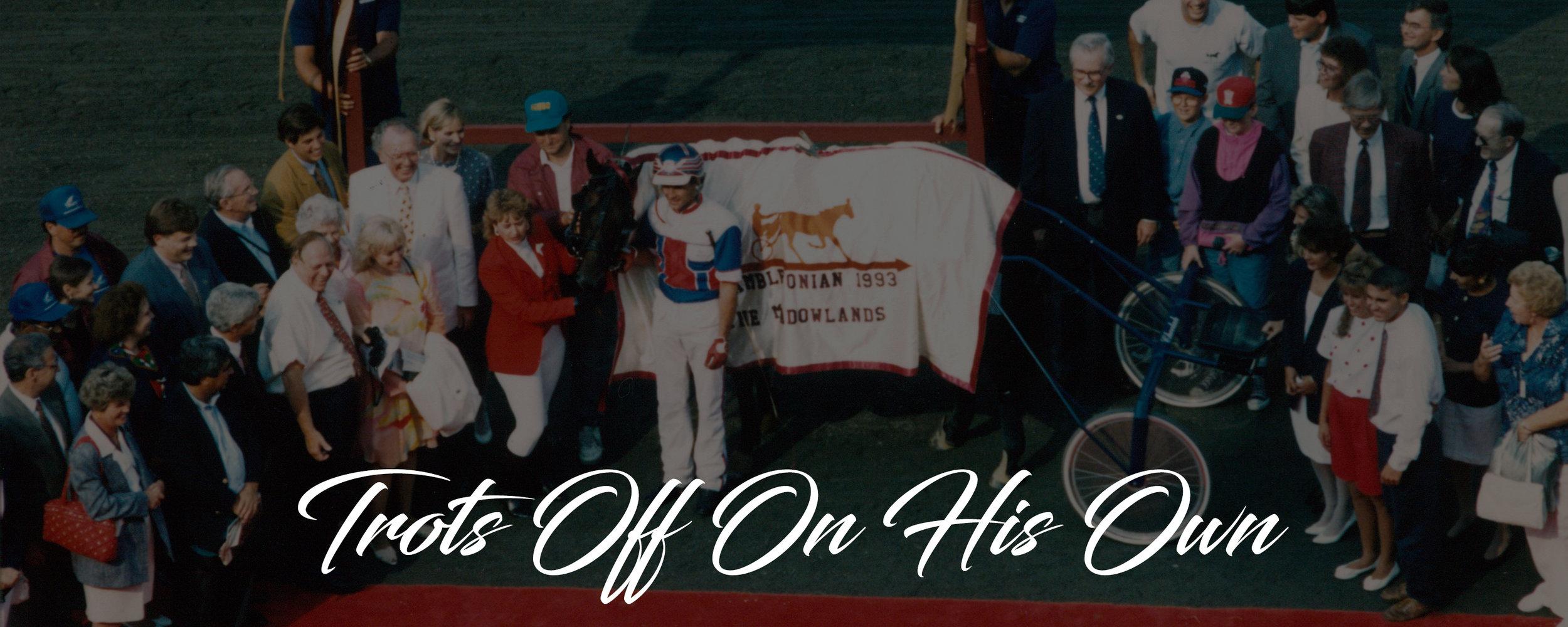 history banner 1993.jpg