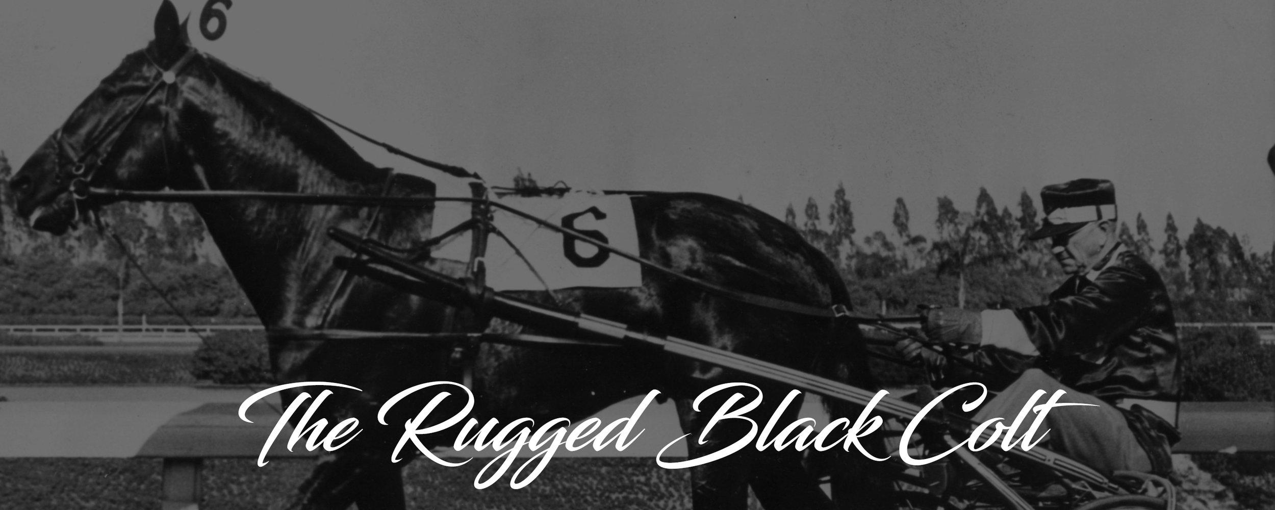 history banner 1947.jpg