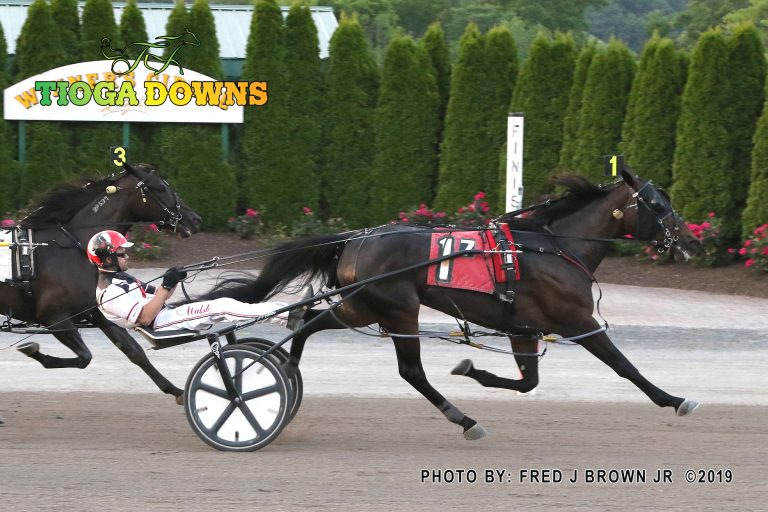 Rocknroll Annie was the winner of the second division of Tompkins-Geer for 3-year-old fillies. Fred Brown Photo.