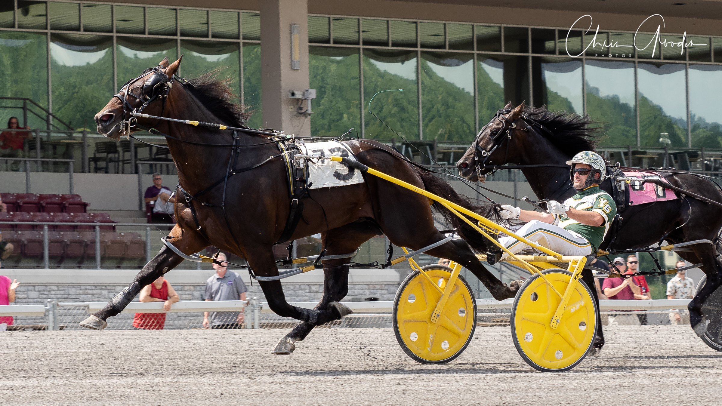 Captain Victorious and Yannick Gingras won their division of the Delvin Miller Adios in 1:50.4. Chris Gooden Photo.