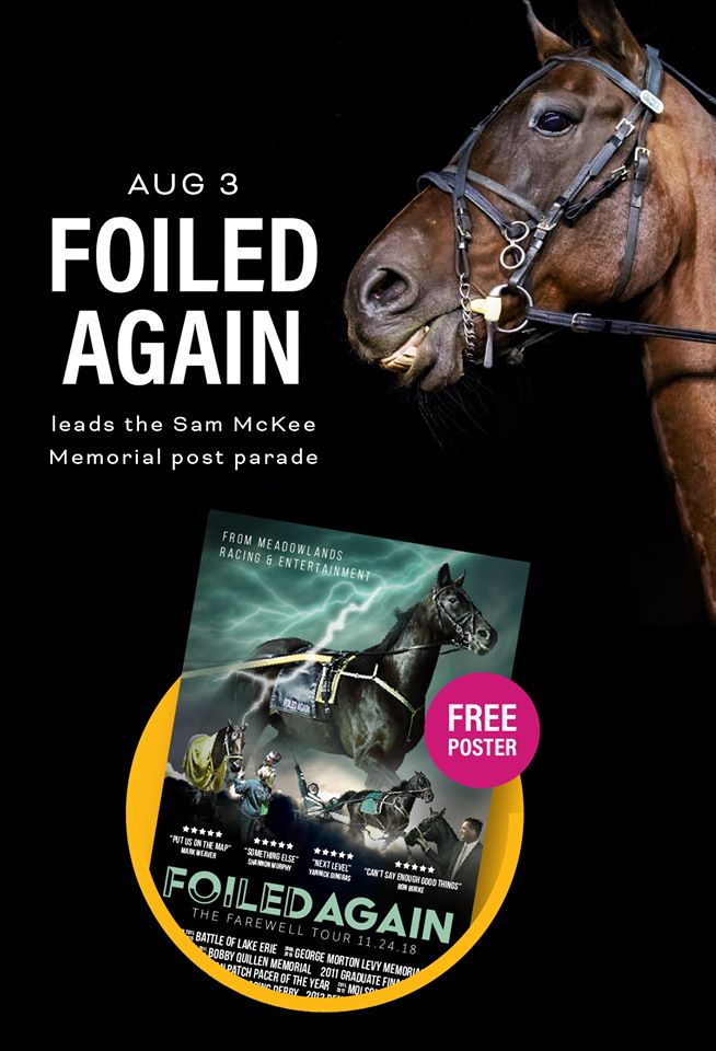 The richest standardbred ever will be here on Hambo day... 💛FOILED AGAIN 💛 He will be leading the Sam McKee Memorial post parade! He will be coming along the rail to meet his fans.. You can also grab a Foiled Again poster in the Fanzone tent *while supplies last!