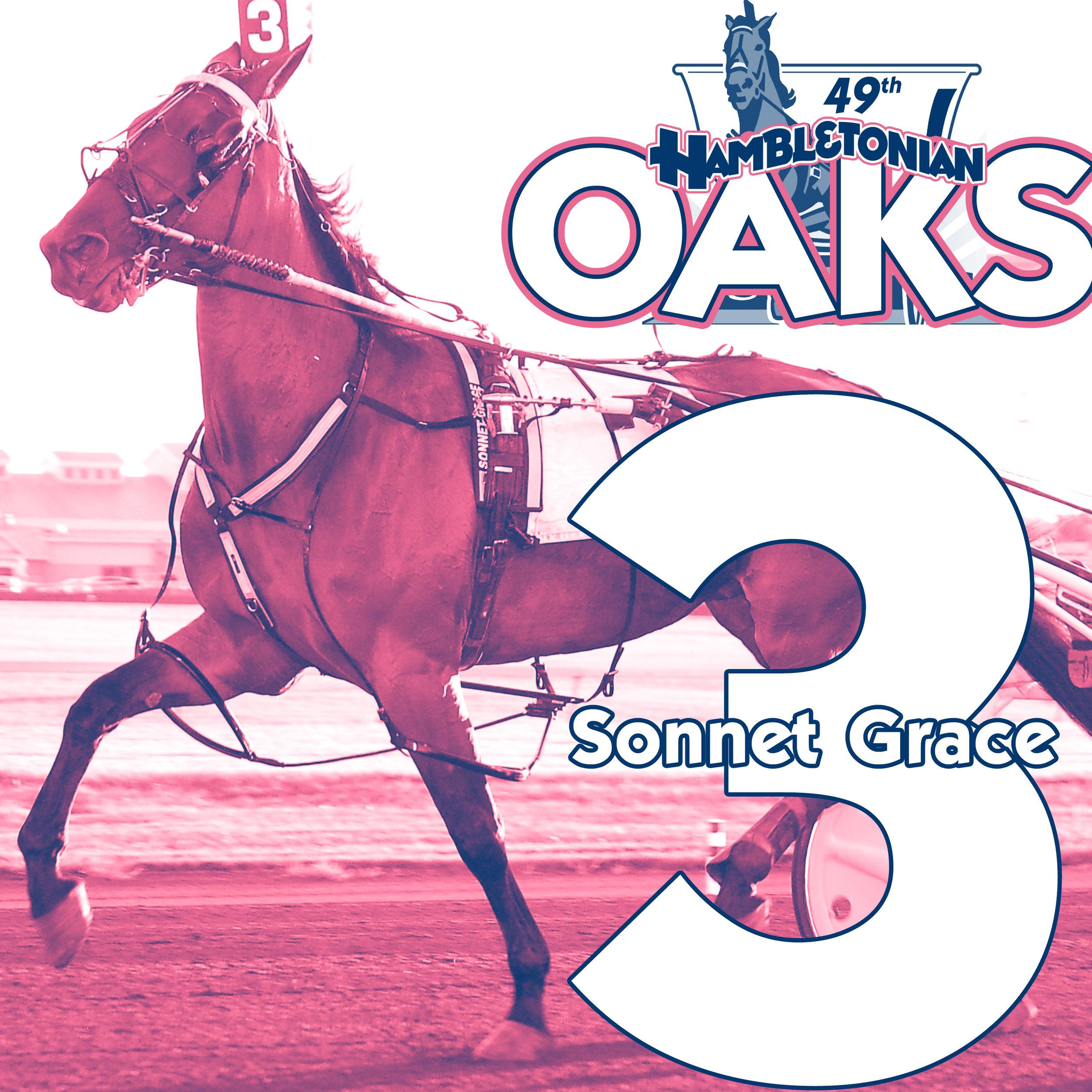 oaks 3.jpg