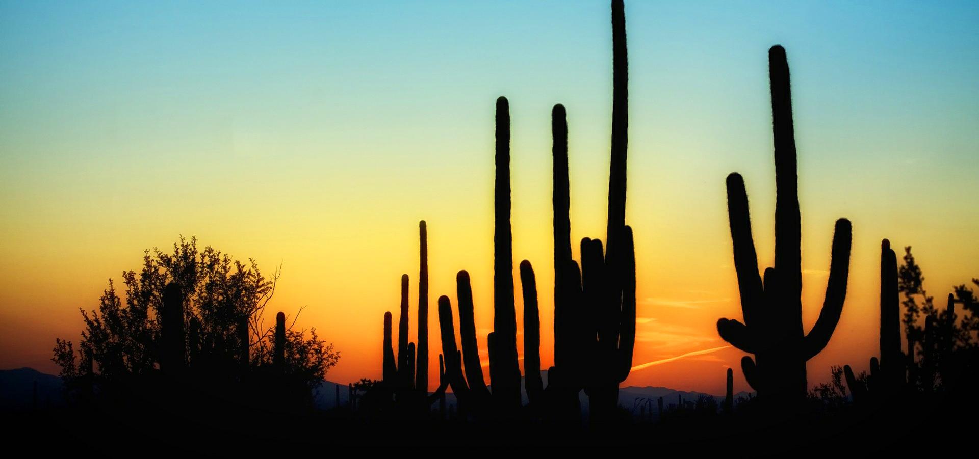 sunsetblue3.jpg