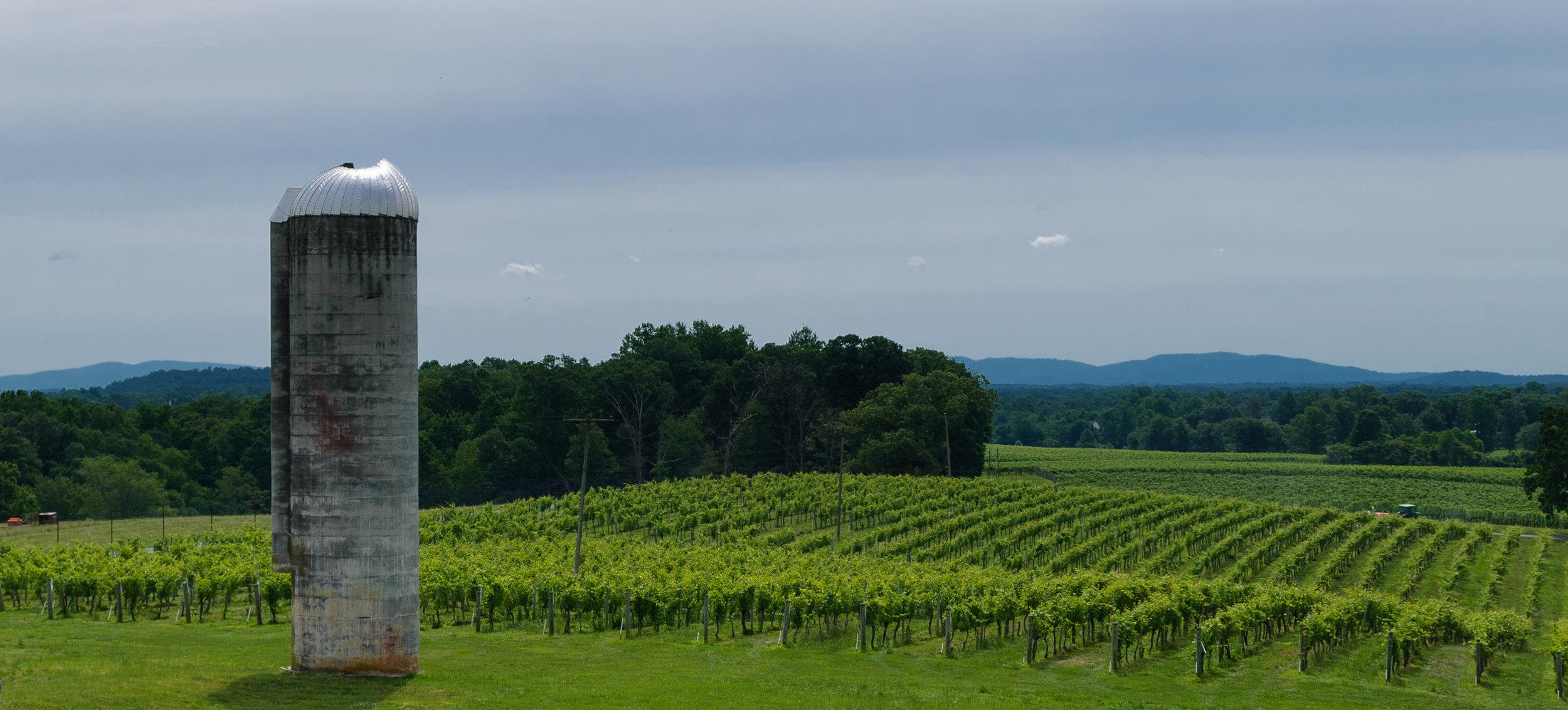 grace-estate-winery-charlottesville-va.jpg