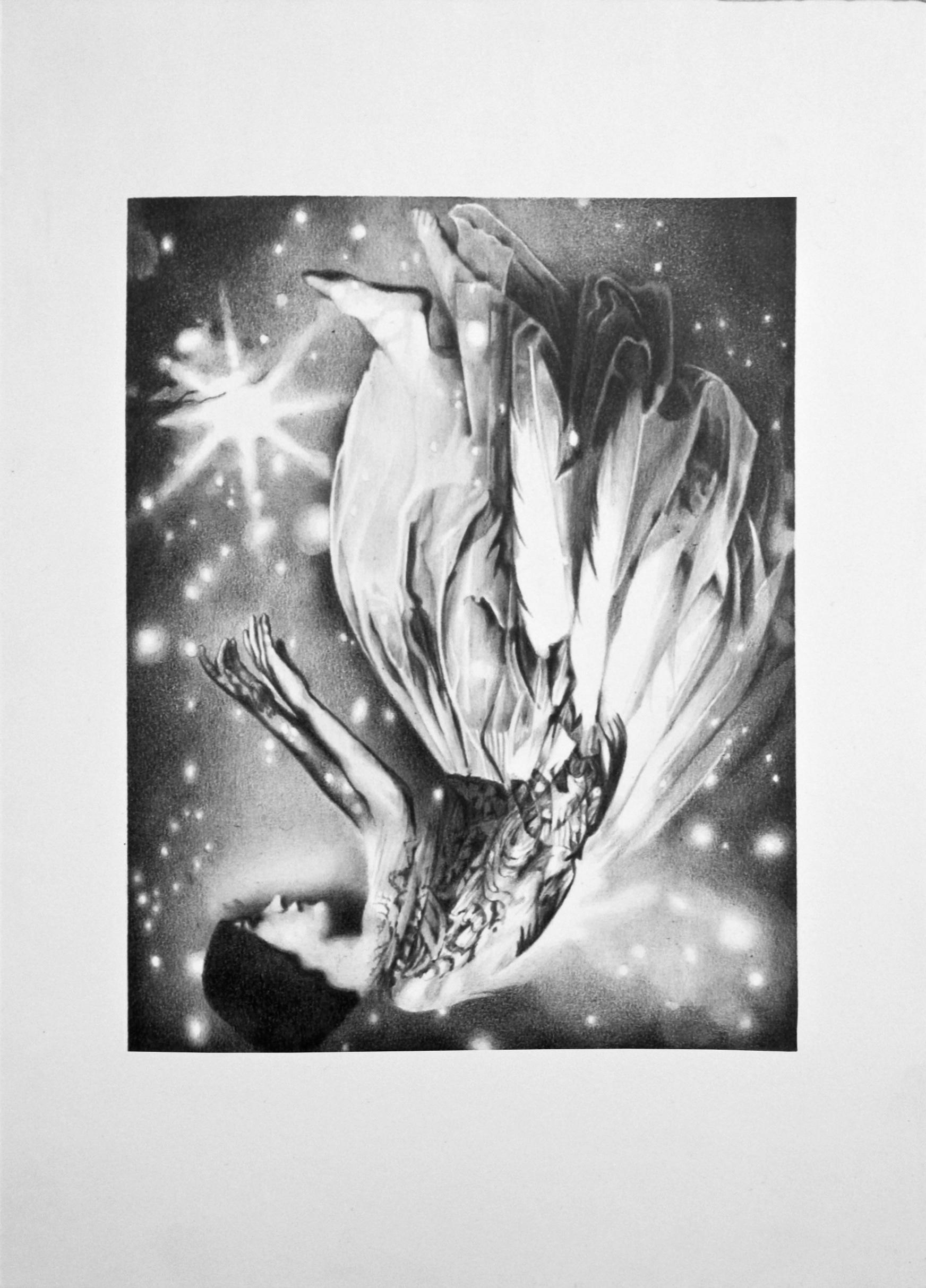 Ilona Kiss -  Moth  (2016)
