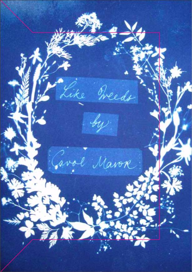 Like Weeds, Carol Mavor.png