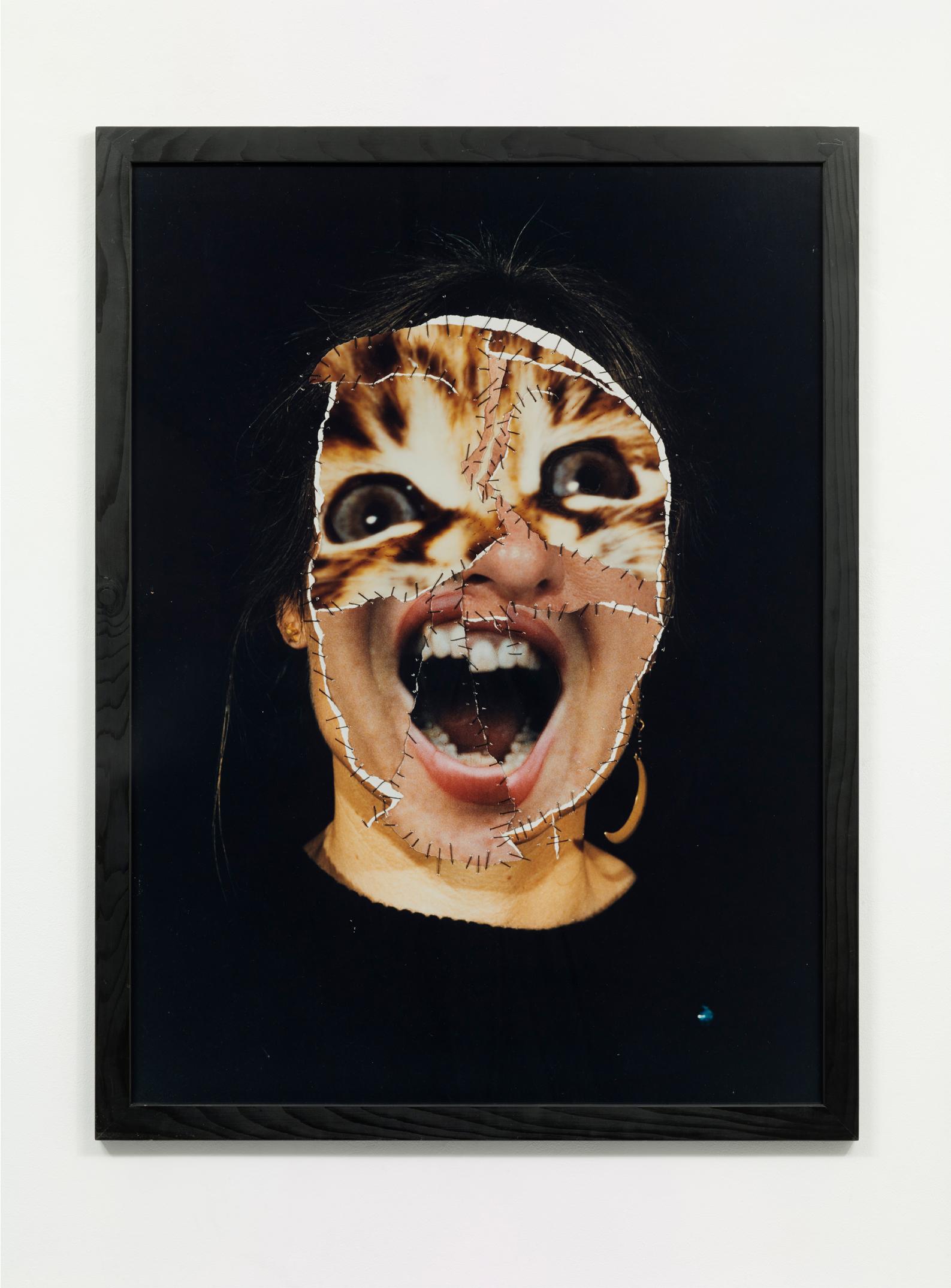Annegret Soltau, GRIMA - Self with cat (three screams), 1986