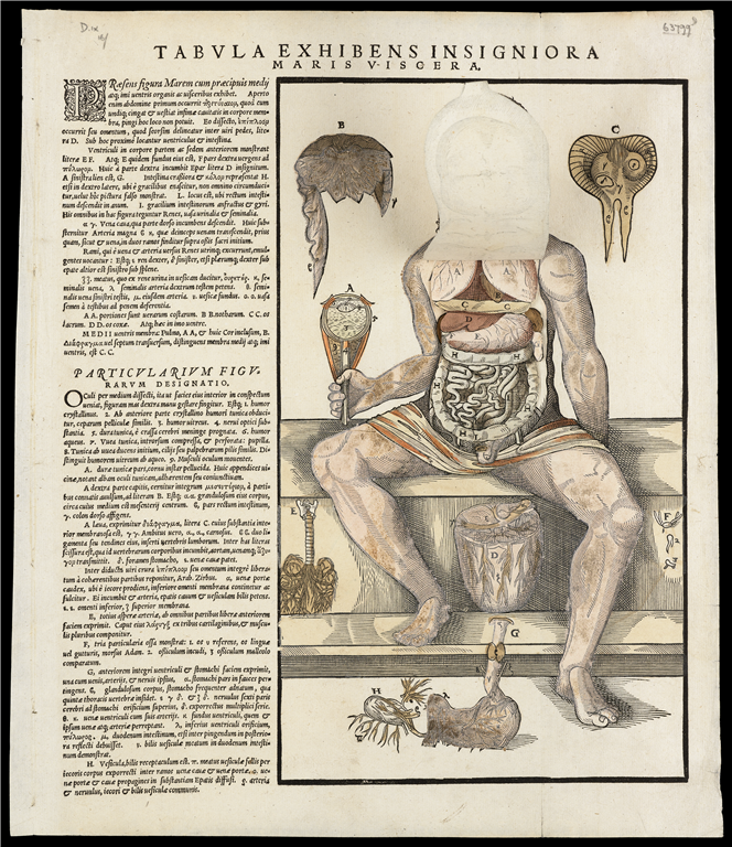 Anonymous (published in Wittenberg), 'Flap Anatomy' of a Male Figure (1573). Woodcut. Wellcome Library, London