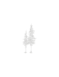 Raelee-Marie_Brand-Elements_Trees_White_scaled.png