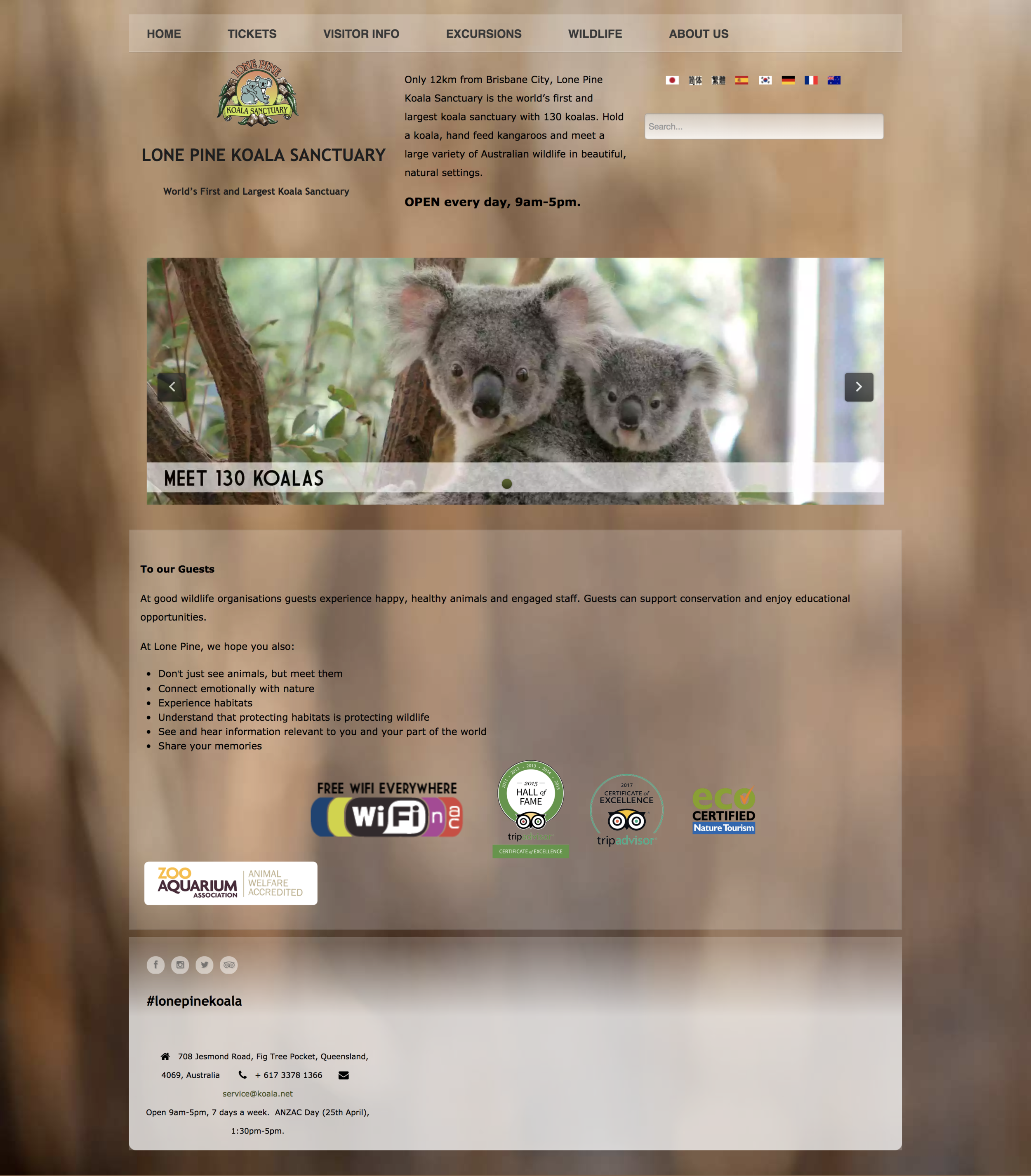 Lone Pine Koala Sanctuary (Based in Brisbane, Australia)