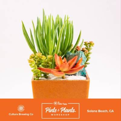 Pints_Plants_Culture_Brew_1+(1).jpg