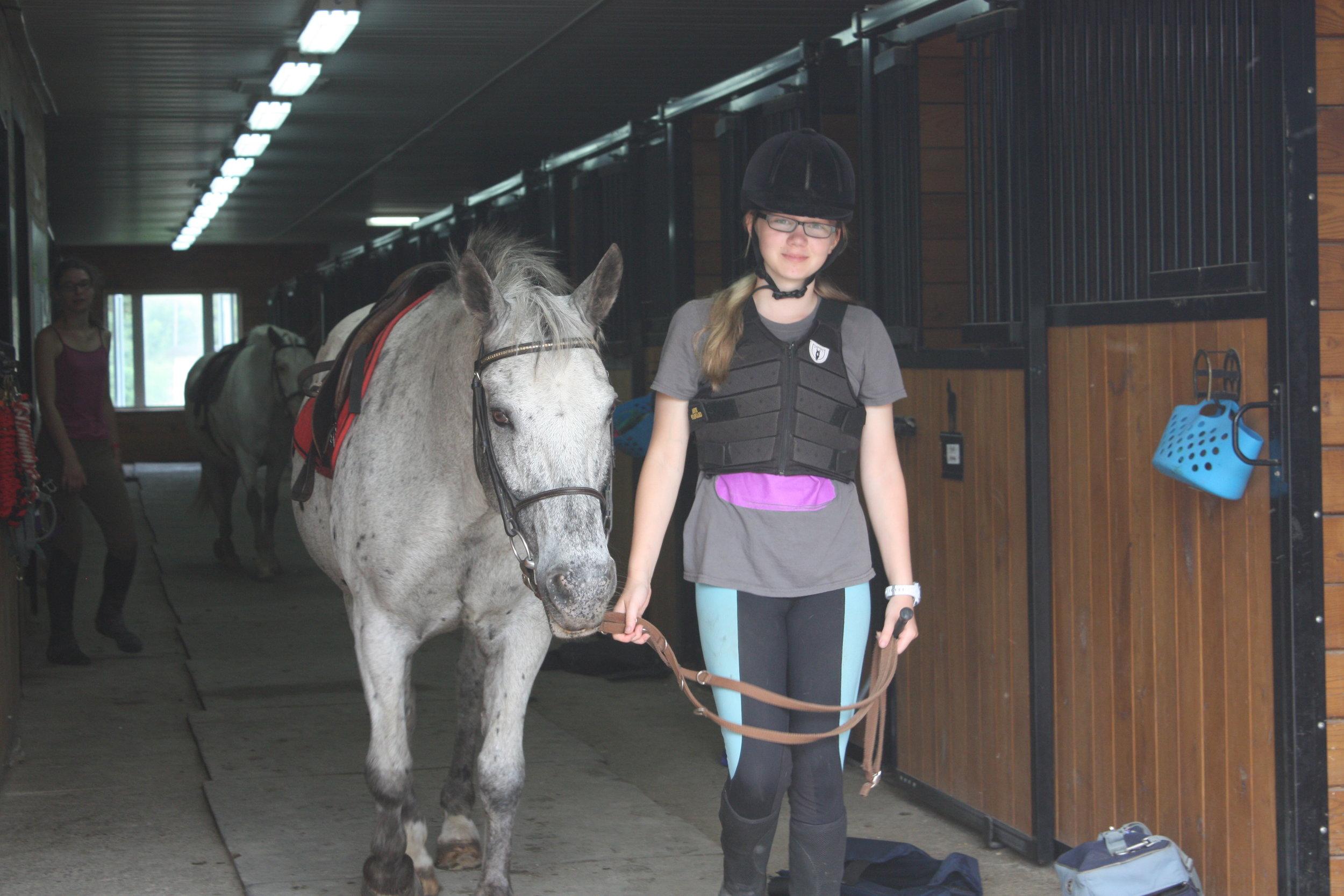 Facilities Saddlewood Equestrian Centre