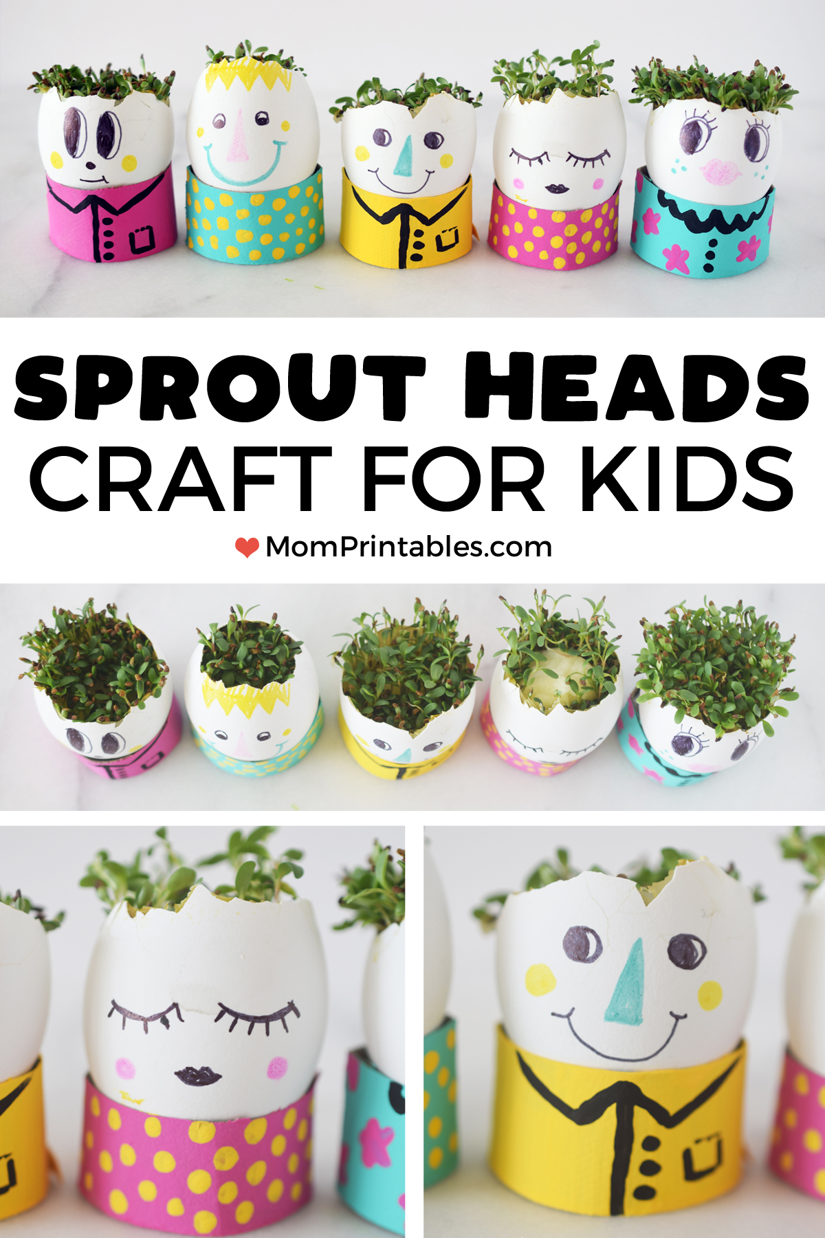 Craft   planters   people   haircut   art   hard boiled   gluten free   recipes   easter   for kids   egg sprouts   grass head   cress egg head   kids activity   kids craft   kids science    #kidscraft #science #toddler #preschool #EggHead #plants
