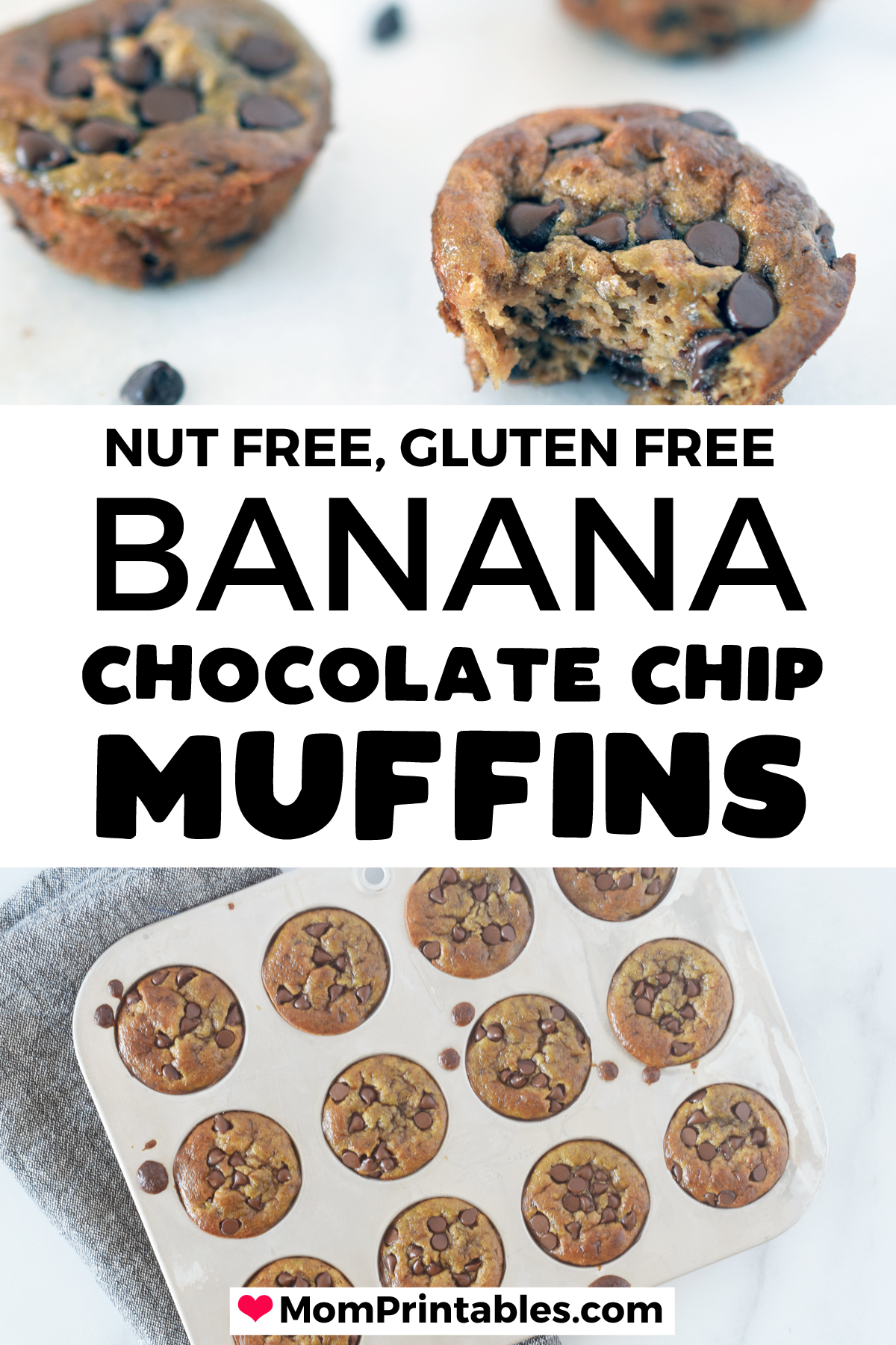 Flourless Sunbutter Banana Chocolate Muffins | healthy | nut free | clean eating | chocolate chips | food processor | blender | dairy free | maple syrup | refined sugar free | school snack | kids lunches | snacks | kids | fun | egg cups | sweet treats | simple | back to school | allergy friendly #kids #nutfree #snacks #muffins #allergyfriendly