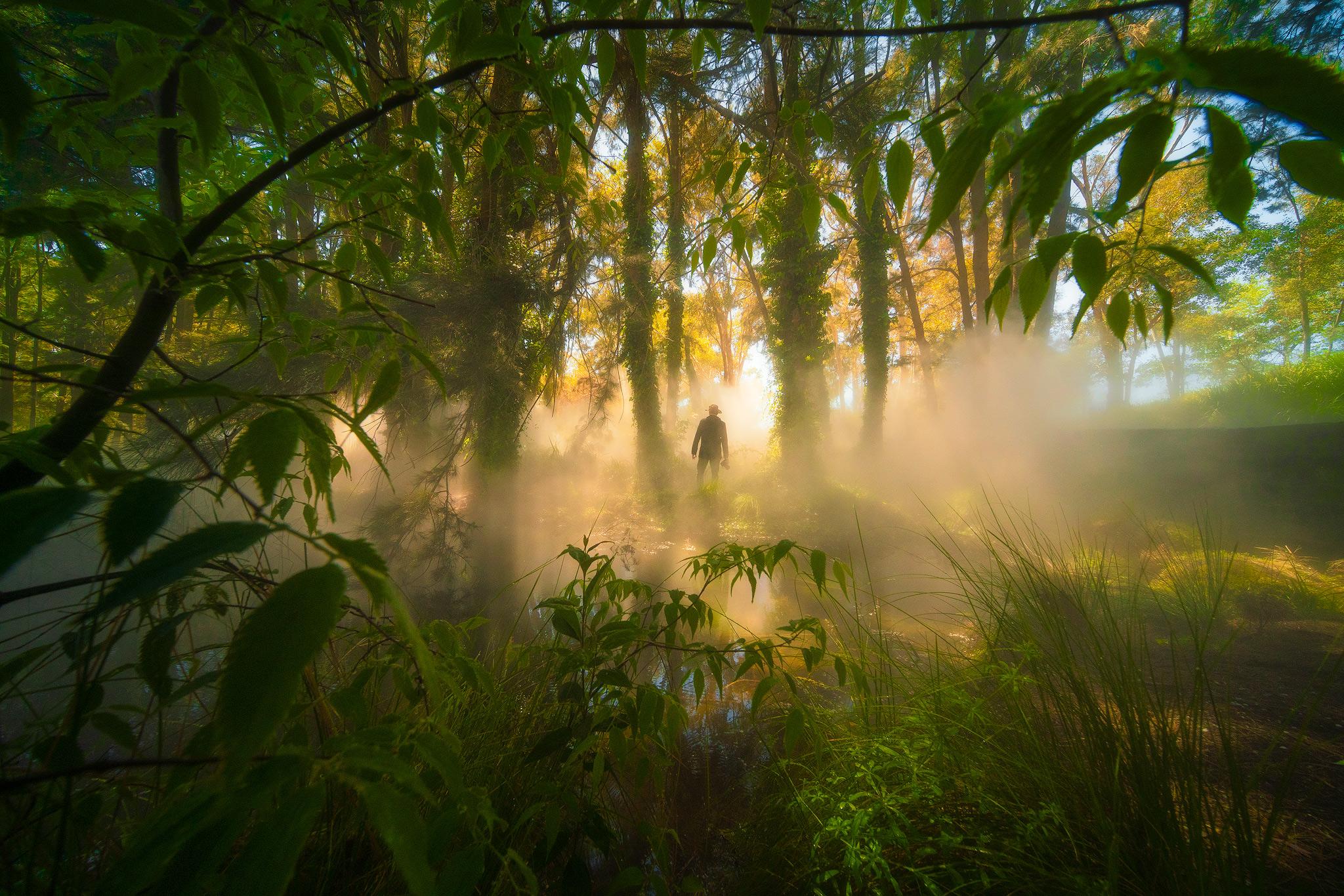 MattDonovan_Canberra_NGA_02-FB.jpg