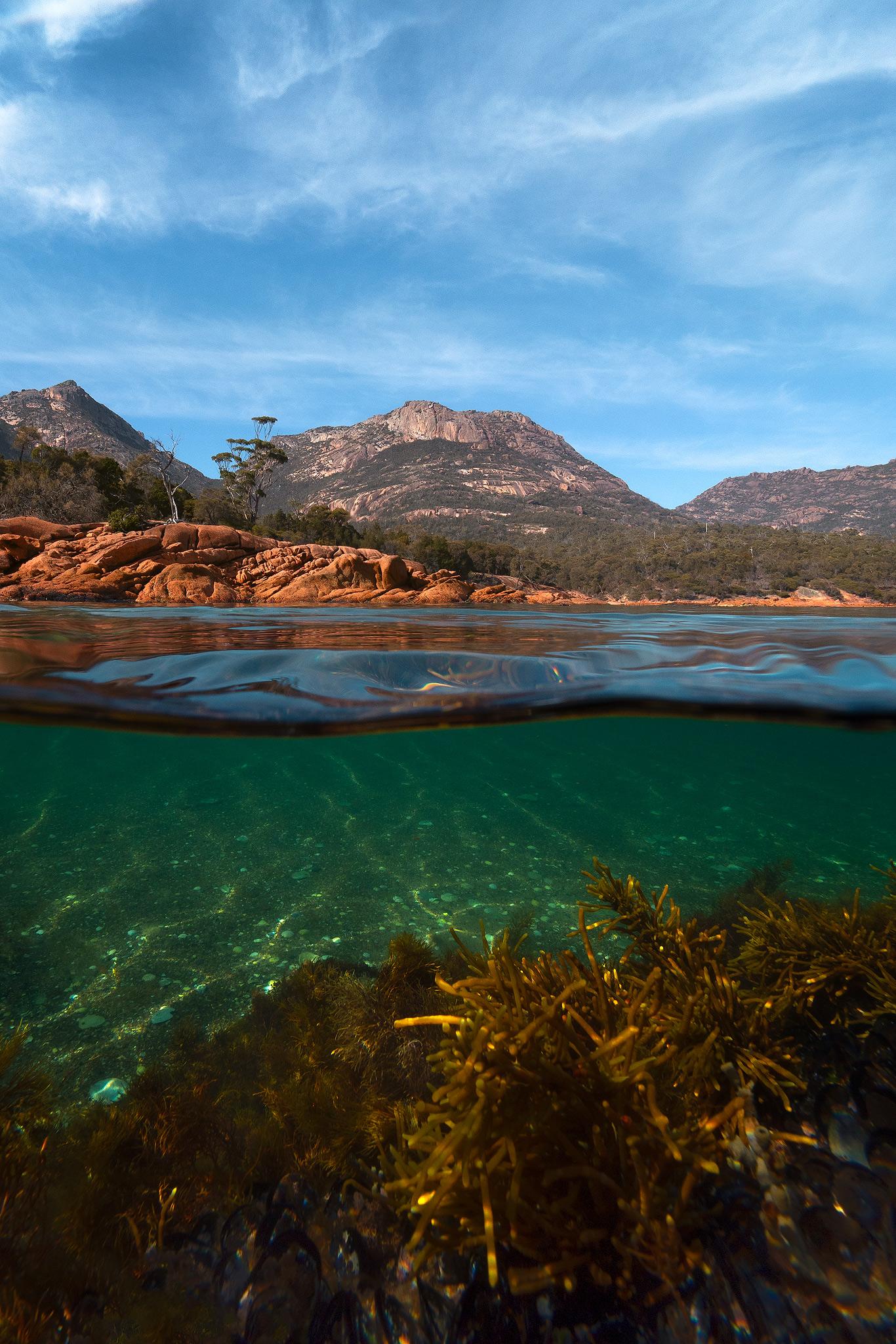 MattDonovan_Tasmania_HoneymoonBay_FB.jpg
