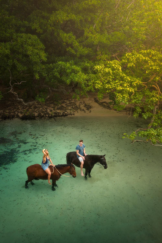 matt-donovan-vanuatu-horses-01.jpg