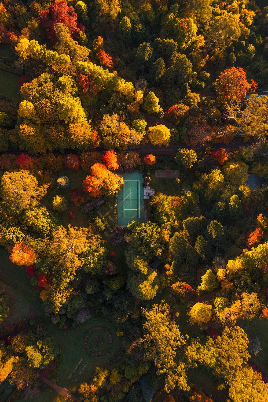 matt-donovan-aerial-mount-wilson-01.jpg