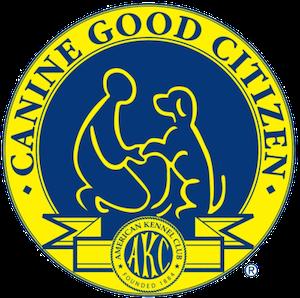 AKC CGC Prep Class -