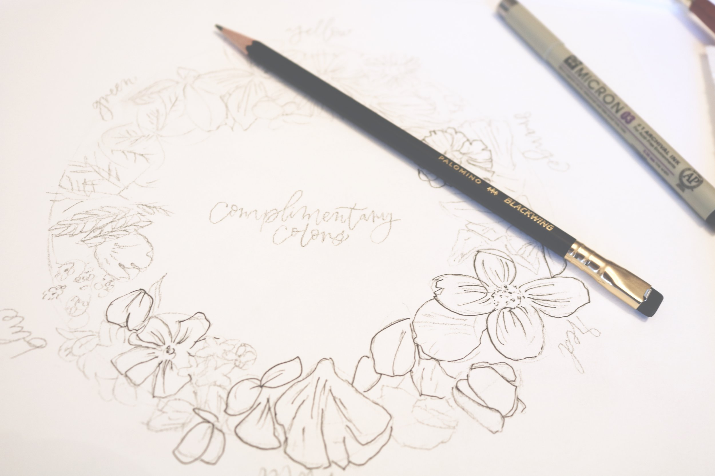 emilime designs botanical illustration workshop.jpeg