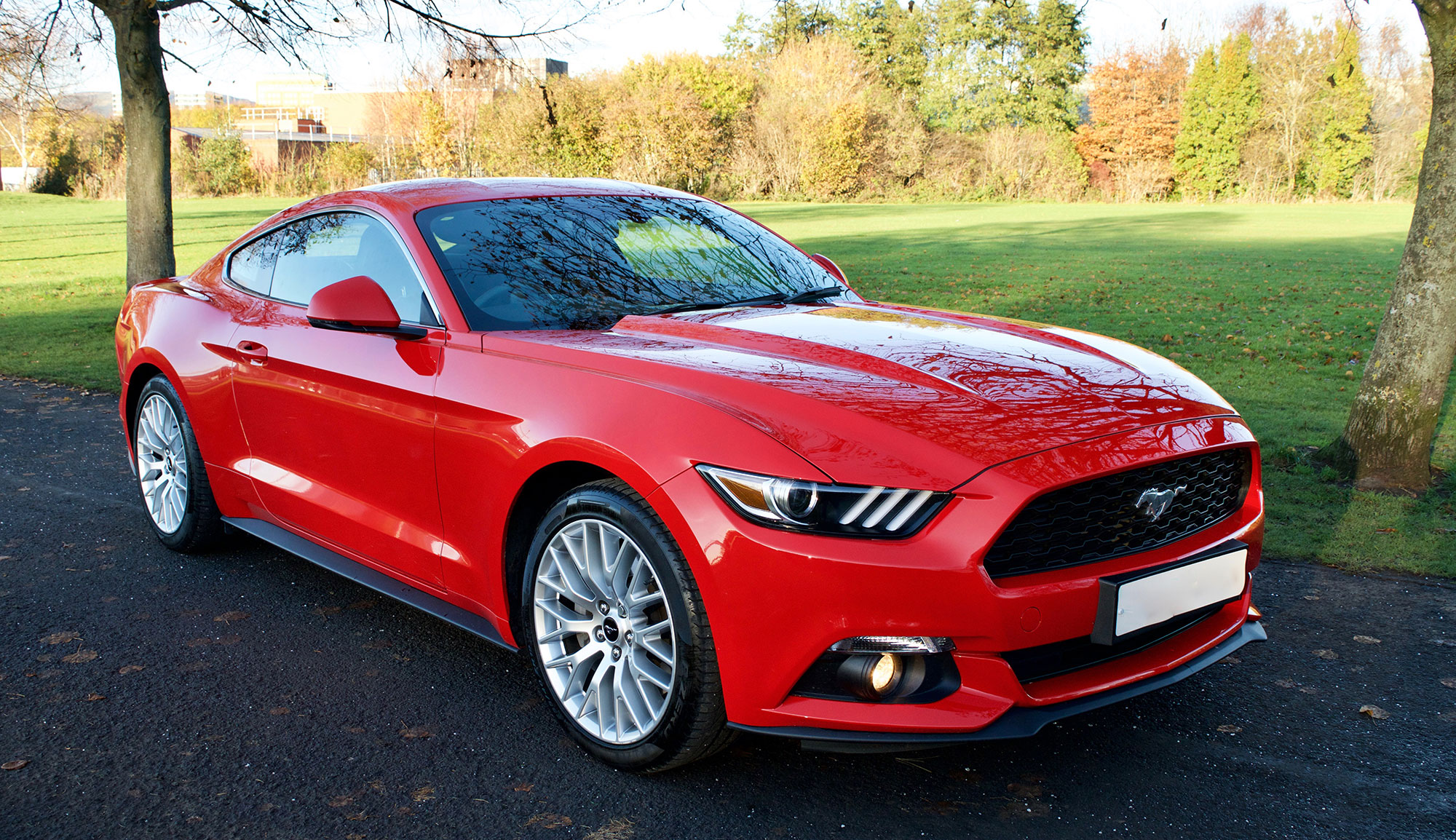 Ford Mustang 2.3 Ecoboost (Custom Pack)